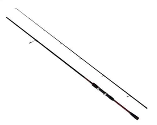 1447 CAPTAİN SEA BASS GAME  2 PARÇA 10-30GR  240CM